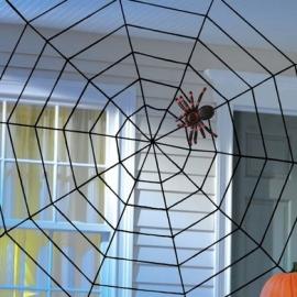 elastická pavučina